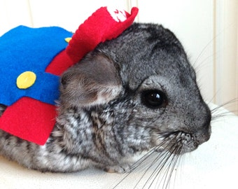 Super Mario Bros costume hamster / guinea pig / chinchilla / bunny rabbit. Pet Halloween costumes by Marmota Café.