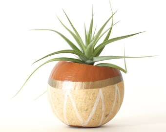 Air Plant Planter Pod with Air Plant, Tan, Gold, White. Hand painted Terrarium. Tan Metallic Gold Modern Planter Thank you hostess Gift