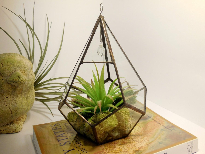 large hanging terrarium glass terrarium geometric teardrop. Black Bedroom Furniture Sets. Home Design Ideas