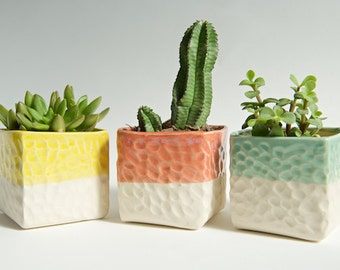 Succulent Planters Set Yellow Mint Coral Succulent Pot Large Ceramic Planter Indoor Planter Air Plant Holder Gardening Gift Gifts for Mom