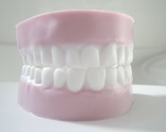 Teeth Soap - One Set of Minty Clean Soap Chompers