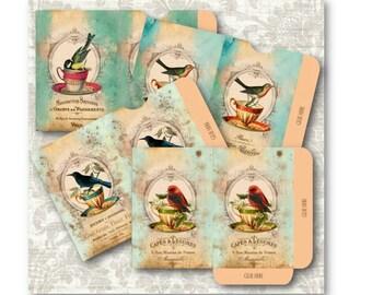 Digital Collage Sheet Download - Bird Tea Cups Envelopes -  703  - Digital Paper - Instant Download Printables