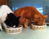 Personalized Cat or Dog Food Bowl or Water Bowl   (three sizes to choose from)