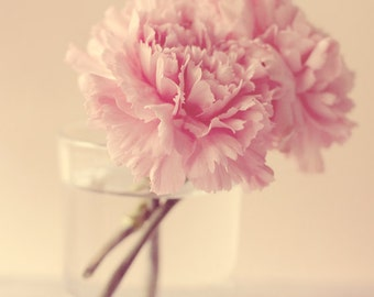 stilllife photography print, flower photo, pink carnation, fine art photography, floral art, wall art, pink home decor, nature photography