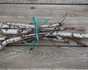 Birch Branches, Birch Limbs, White Birch Tree Branches, Birch Twigs, Fairy Garden aor a basket