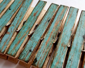 Robins egg blue weathered wood themed decoupage clothespins set of 10