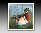 Wood Duck Ceramic Tile with Hook or Coaster