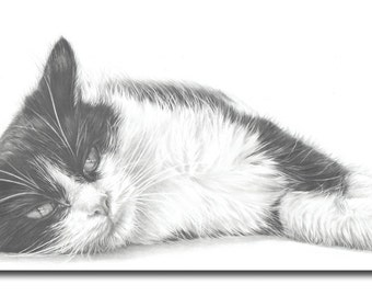 5 Greetings Cards. Black and White Cat. Gift for Cat Lovers, Cat Greetings Cards, Cat drawing.