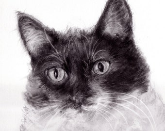 Animal or People Portraits 11x14 (click on image to see more samples)