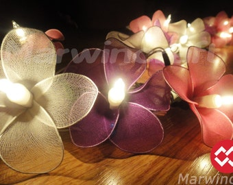 Battery or Plug  20 White Pink Purple Frangipani Flower Fairy String Lights Party Patio Wedding Floor Hanging Decor Living Bedroom Holiday