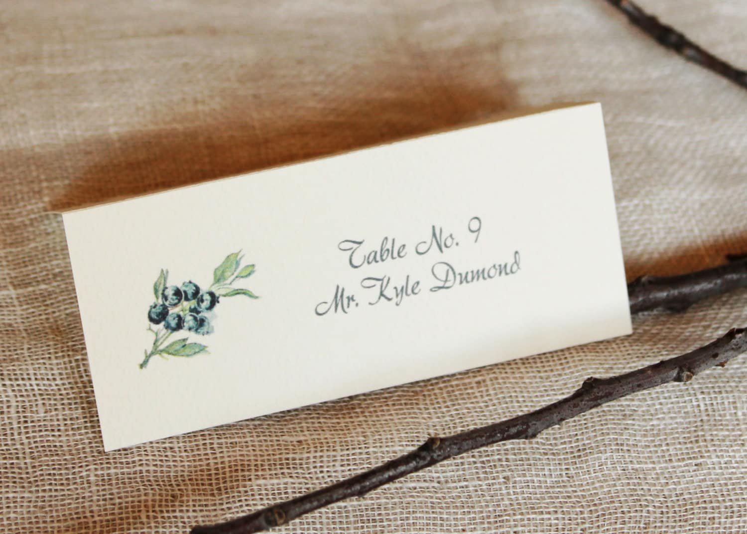 Escort Card Blueberry Wedding Table Name Place Card