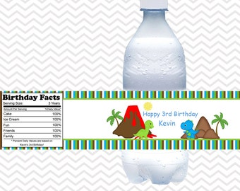 Dinosaur - Personalized water bottle labels - Set of 5  Waterproof labels
