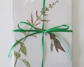 SPECIAL SALE - Assorted Six Pack of Blank Greeting Card