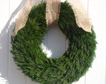 Preserved cypress wreath, christmas wreath, holiday wreath, christmas decoration, holiday decoration, winter wreath, wedding wreath