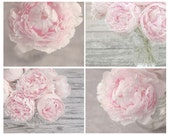 Set of 4 Flower Photography Prints, Pink Peonies, pastel pink, gray, nature, nursery art, shabby chic wall art collection