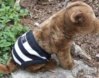 Diaper pants for dogs . Diaper cover