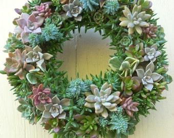 Succulent Wreath 13 inch diameter