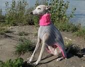 Neon & Gray Sighthound Jumper (super warm)
