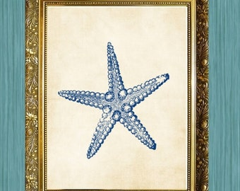 Buy 3 Get 1 FREE Starfish Art Print Sea Life Art Print Bathroom Print 8 x 10 Ocean Art Natural History Blue Seaside Print