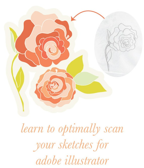 learn how to optimally scan your sketches for illustrating