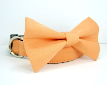 Wedding dog collar-Peach Dog Collars with bow tie set  (Mini,X-Small,Small,Medium ,Large or X-Large Size)- Adjustable