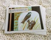 Tree Swallow Card w/ gold ribbon, bird card, nature card, birdwatching card, vintage card, sewn card, nature lover, metallic card, handmade