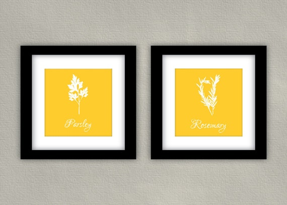 Herbs Kitchen Art Print Set - Parsley, Rosemary 8x8 (2)