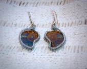 Mini Silver Wire Wrapped Ammonite Fossil Earrings