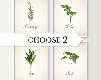 Kitchen Wall Decor - Choose 2 Herbs Kitchen Art Prints - Dining Room Decor - Culinary - Food Art - Cooking - Basil Sage Rosemary Parsley