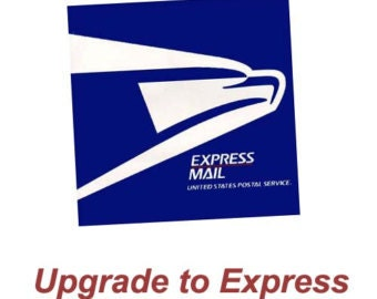 Priority Express Mail Delivery