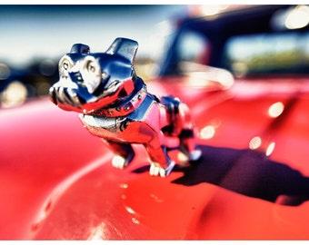 Car Parts Photography, Mack Truck Hood Ornament, Metallic Photographic Print