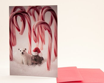 Polar Bear and Hippo Friends: Christmas Card