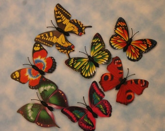3D Butterfly Magnets