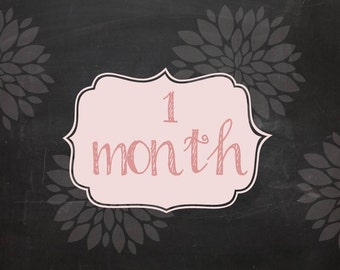 Set of 12 Baby monthly chalkboard printable signs - 12 months for baby's first year
