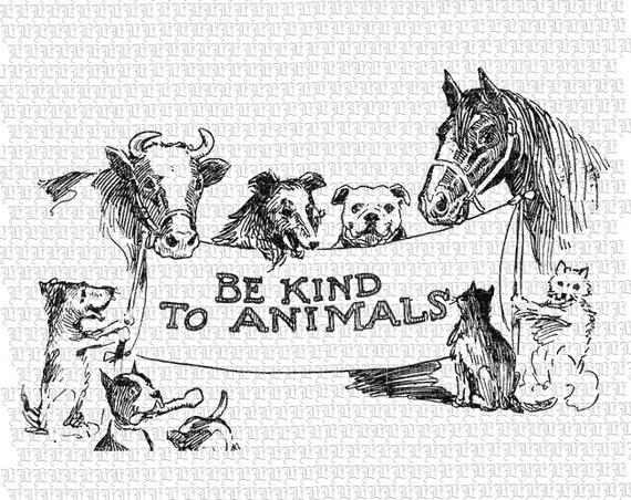 Animal Rights Welfare Protection Campaign Message Clip Art