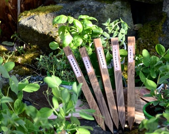 Vegetable Garden Stake With Copper Tag (Each)