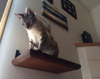 "18"" Solid Cat Shelf"