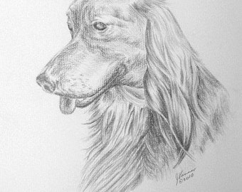 Long-Haired Dachshund by J. Renner  B/W Blank Notecards w/Envelopes Boxed Set of 5-Free US Shipping