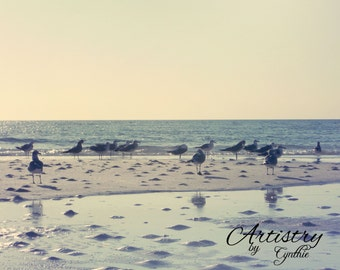 white birds, Florida birds, Soft Pink,  Beach Photography, Landscape, Ocean photography, Coastal Wall Art, Nautical