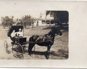 Horse And Buggy, Real Photo Type Postcard