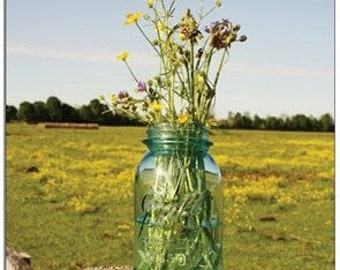 Blue Jar with Wildflowers in Pasture