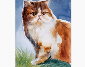 Cat,  lovely cat, orange-white cat, original watercolor painting, handpainted, 7,8 x 11,8 inch incl.passe-partou, nature, home deco, animals