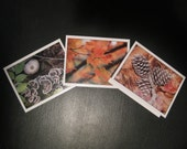 Foliage Series - Set of 6 Cards - FREE Shipping