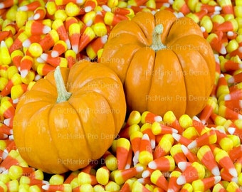 Pumpkins and Candy Corn Halloween - Edible Cake and Cupcake Topper For Birthday's and Parties! - D5865