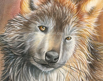 Popular items for wolf pencil drawing on etsy for Lupo disegno a matita