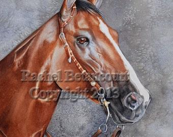 Stunning Watercolor Portrait of Beautiful Quarter Horse  Show Horse.
