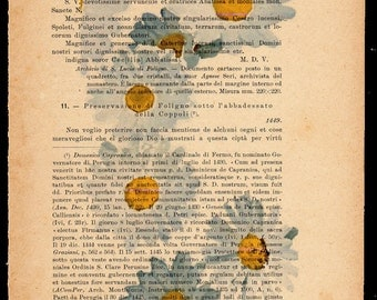 Flower prints on sheets of paper. P.19, cascade of daisies