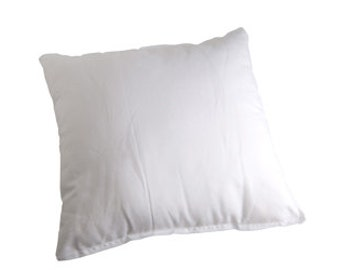 "PF204 - Pillow Form Feather/Down 22"" x 22"""