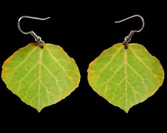 Green & Yellow Aspen Leaf Earrings #4