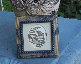 Darling Miniature Matted Bird Picture!